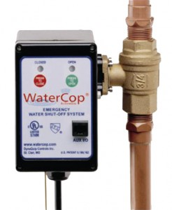 Houston WaterCop – Leak Detection